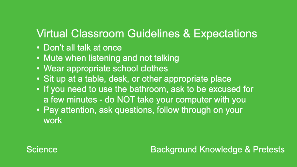 Virtual Classroom Guidelines & Expectations