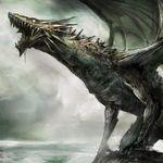 Drago56114